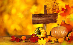 Beautiful autumn background Royalty Free Stock Photography