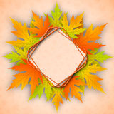 Beautiful  autumn background with maple leaves. Beautiful autumn background with realistic maple leaves. Vector illustration Stock Images