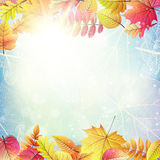 Beautiful autumn background with sun. EPS 10. Vector file included Royalty Free Stock Photography