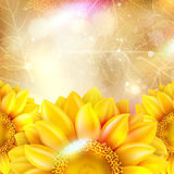 Beautiful autumn background with sun. EPS 10. Vector file included Stock Photos