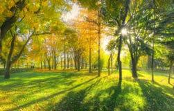 Fall season Royalty Free Stock Photography