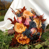 Beautiful autumn bouquet in the grass Royalty Free Stock Photos