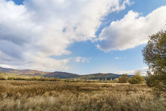 Beautiful   autumn cloudy landscape Royalty Free Stock Image