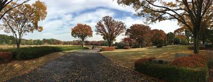 Beautiful autumn colors in Japanese garden Royalty Free Stock Photos