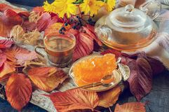 Beautiful autumn composition with tea. autumn leaves and a Cup with a clear teapot and grape sugar on a rustic tree background. royalty free stock images