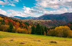 Beautiful autumn countryside with forested hills. Wonderful autumn scenery in mountains. beautiful countryside with forested hills and gorgeous afternoon sky royalty free stock photos