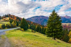 Beautiful autumn countryside. Lovely location of Carpathian mountains. gorgeous weather conditions stock photos