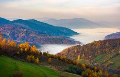 Beautiful autumn dawn in mountainous rural area. Yellow foliage on trees and fog in the distant valley Royalty Free Stock Photo
