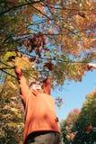 Beautiful autumn day Stock Photography