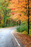 Beautiful Autumn Drive Royalty Free Stock Images