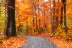 Beautiful Autumn Drive Stock Photos