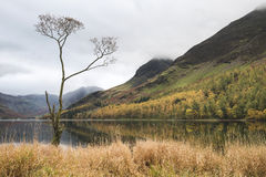 Beautiful Autumn Fall landscape image of Lake Buttermere in Lake Royalty Free Stock Photo