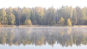 Beautiful Autumn Fall landscape over foggy misty lake. stock video