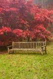 Beautiful Autumn Fall nature image landscape Royalty Free Stock Photo