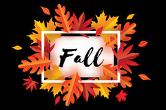 Beautiful Autumn Fall Paper Cut Leaves. Hello Autumn. September flyer template. Stock Images