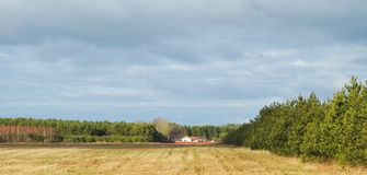 Beautiful autumn field, homes and trees, Lithuania Stock Photography