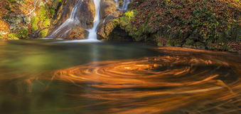 Beautiful autumn foliage and mountain stream in the forest Stock Photo