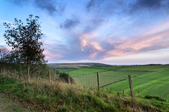Beautiful Autumn forest and fields during sunrise landscape Royalty Free Stock Photo