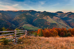 Beautiful autumn forest in the mountains at sunset Stock Images