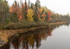 Beautiful Autumn Forest Reflections on the Wisconsin River. Wonderful travel destination is Wisconsin parks in the Autumn season stock images