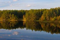 Beautiful autumn forest Stock Photos