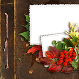 Beautiful autumn frame on the old album royalty free stock image