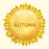 Beautiful autumn frame with yellow leaves. Vector illustration eps 10 Royalty Free Stock Image