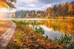 Beautiful autumn. Golden autumn in the city park near the river Stock Photos