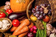 Free Beautiful Autumn Harvest Stock Photo - 33940910
