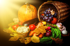 Beautiful autumn harvest of vegetables. And leaves on black background with sun light Royalty Free Stock Images