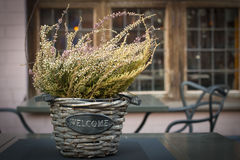 Beautiful autumn heather in a basket with the inscription Wellcome Royalty Free Stock Photos
