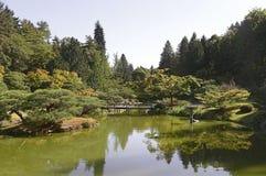 Beautiful autumn japanese garden in Seattle. On sunny day Royalty Free Stock Photo