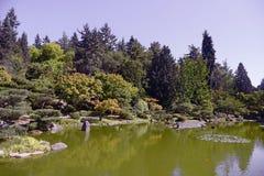 Beautiful autumn japanese garden in Seattle. On sunny day Stock Image