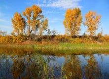Beautiful autumn lake landscape. Beautiful small lake landscape at autumn Stock Images