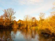 Beautiful autumn lake scene sunset light golden on trees sky spa Stock Photos