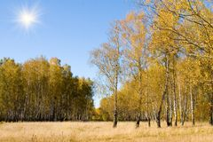 Beautiful autumn landscape Royalty Free Stock Photo