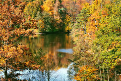 Beautiful autumn landscape Royalty Free Stock Image