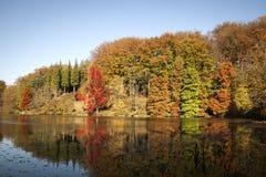 Free Beautiful Autumn Landscape Royalty Free Stock Photography - 46882557