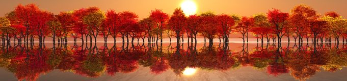 Beautiful Autumn Landscape. Royalty Free Stock Photos