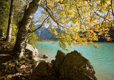 Beautiful autumn landscape in the Alps. Royalty Free Stock Images