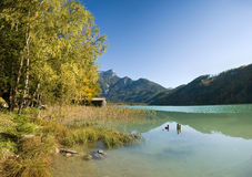 Beautiful autumn landscape in the Alps. Royalty Free Stock Photography