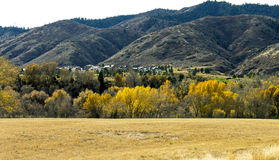 Beautiful autumn landscape in Colorado stock photos
