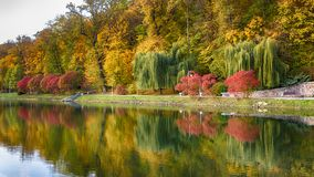 Beautiful autumn landscape with fog over lake Royalty Free Stock Photos