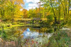 A picturesque autumn forest reflection landscape with footbridge over pond. stock photos