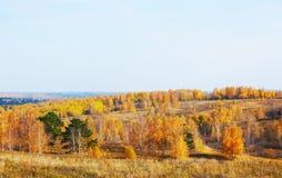 Beautiful autumn landscape Stock Images