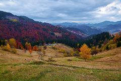 Beautiful autumn landscape with the green fair trees, orange coloured forest, high mountains and blue sky. Stock Photography