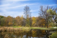 Beautiful autumn landscape with lake in front. Autumn Landscape. Park in Autumn. The bright colors of autumn in the park by the lake stock images