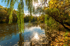 Beautiful autumn landscape Royalty Free Stock Images