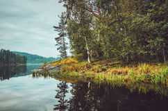 Beautiful autumn landscape with lake, pine trees, natural stone coast in the Republic of Karelia, Ladoga , northern Royalty Free Stock Image