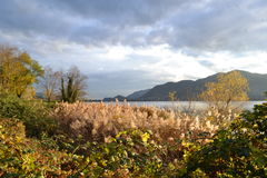 A beautiful autumn landscape at Lecco in Italy. Stock Image